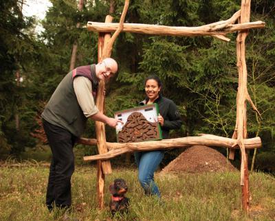 """Foto zur Meldung: Ameisenhügel im Blick Ausstellungseröffnung """"Kleine Tiere – große Baumeister"""" im Walderlebnis Ehrhorn"""