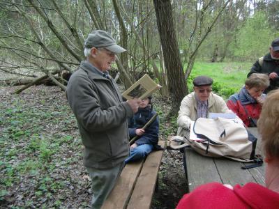 Foto zur Meldung: Frühlingswanderung zu den Langen Dammwiesen