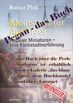 Foto zu Meldung: Kleinstadt für Anfänger - das neue Buch von Rainer Pleß