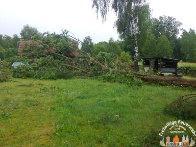 Foto zur Meldung: Mehrere Unwettereinsätze durch umgestürtzte Bäume im Amtsbereich