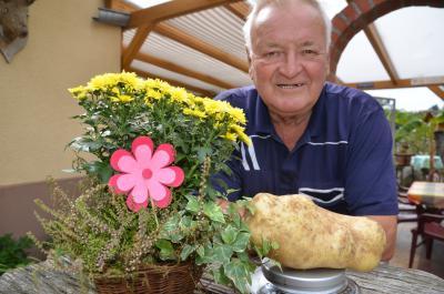 Foto zu Meldung: Kartoffelolympiade 2014