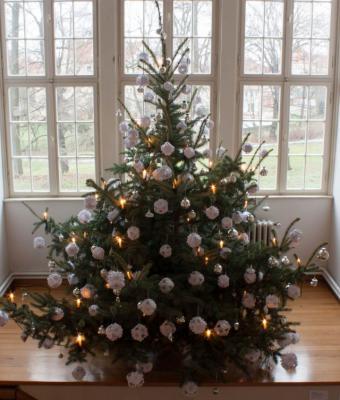 Foto zur Meldung: Das Museum Schloss und Festung Senftenberg bittet um Tannenbäume für die große  Weihnachtsausstellung