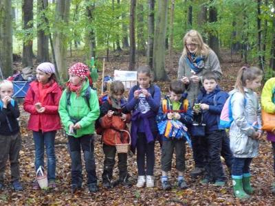 """Foto zur Meldung: Herbstprojekt """"Wald"""""""