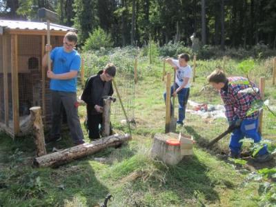 Foto zur Meldung: Meerschweinchen im Zooschulen-Gelände - das Meerschweinchengehege im Hochwildschutzpark wird weiter entwickelt -