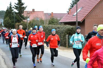 Foto zu Meldung: 36. Winterlauf in Waren - SC Laage mit 40 Aktiven am Start