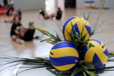 Foto zur Meldung: Volleyball made in Borken liegt im Trend