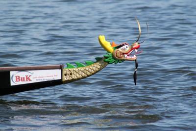 Foto zur Meldung: Drachenbootrennen