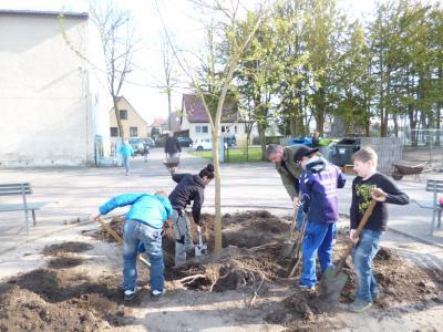 Foto zur Meldung: BUGA-Erwachen an der Otto-Seeger-Grundschule