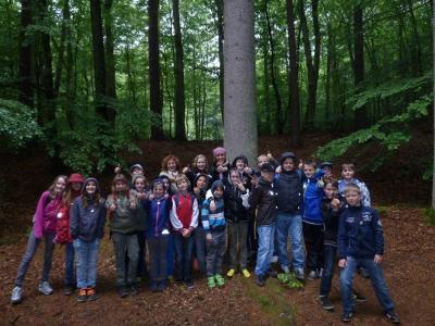 Foto zur Meldung: Waldprojekt der Klasse 5