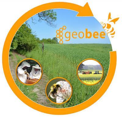 Foto zur Meldung: Geobee: Bienenschutz-Informationsplattform ist online