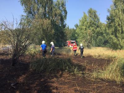 Foto zur Meldung: Holzspäneabfälle brennen in einer Waldschonung in der Pestalozzistraße