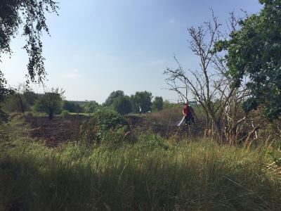 Foto zur Meldung: Flächenbrand in Waldschonung beschäftigt die Falkenseer Feuerwehr weiterhin