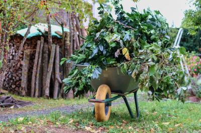 Schredderaktion für Baum- und Strauchschnitt aus Hausgärten