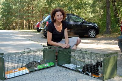 Foto zu Meldung: Tierheim Ladeburg hilft Katzenfreunden in Not