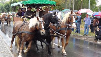 Foto zu Meldung: Mitmachen beim 17. Zinndorfer Oktoberfest