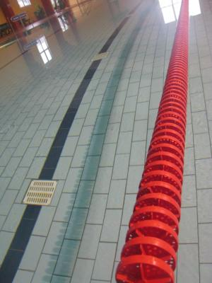 Foto zur Meldung: Ausdauerschwimmen