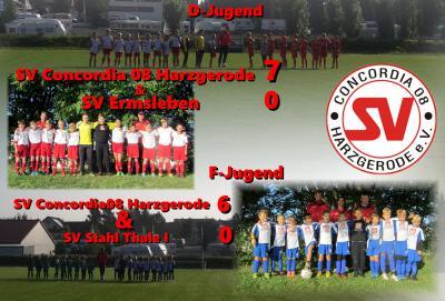 Foto zur Meldung: Ergebnisse F- u. D- Jugend 26.09.2015