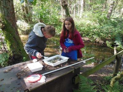 Foto zur Meldung: Schülerwassercamp im Wildpark Eekholt