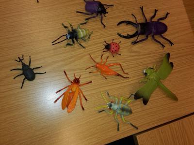Vorschaubild zur Meldung: Insekten: faszinierend und erfolgreich