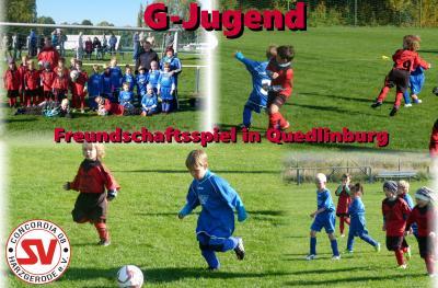 Foto zu Meldung: G-Jugend Freundschaftsspiel in Quedlinburg