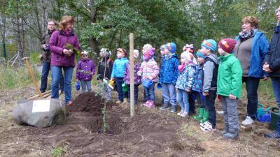 Foto zu Meldung: Baum des Jahres am Naturlehrpfad gepflanzt