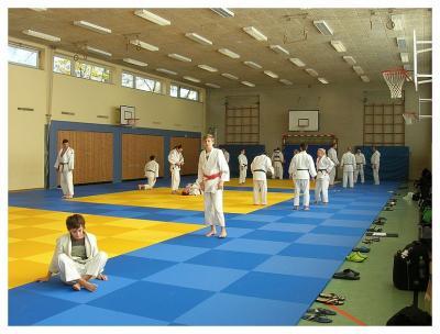 Foto zur Meldung: Kata-Workshop beim SC Hemmingen-Westerfeld