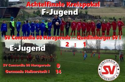 Foto zu Meldung: Viertelfinale Kreispokal: F-Jugend siegt gegen Quedlinburg I !