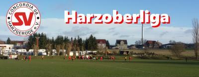 Foto zu Meldung: Harzoberliga: Heimspielniederlage gegen Heudeber