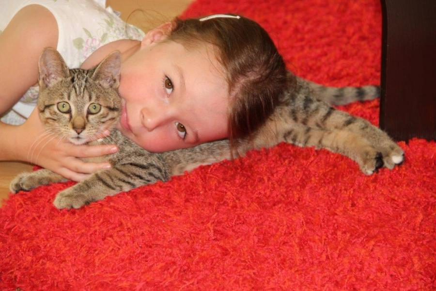 Tierschutzverein Niederbarnim e.V. - Grüße von Familie Venzke