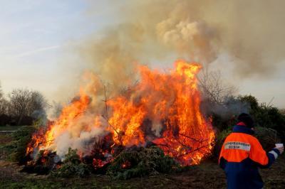 Foto zur Meldung: 150 Weihnachtsbäume gingen in Flammen auf