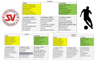 Foto zu Meldung: Einteilung der F-, E- und D-Jugend Staffeln