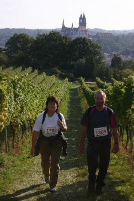 Foto zur Meldung: Erste Spezialwanderung - Weinwanderung