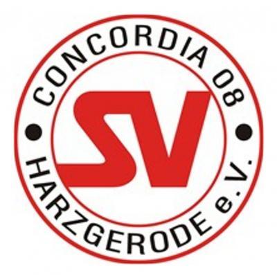 Foto zur Meldung: Harsleber SV gewinnt C-Jugend Kampe-Cup