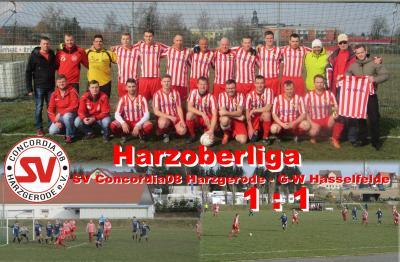 Foto zu Meldung: Harzoberliga: 1:1 im Heimspiel gegen Hasselfelde