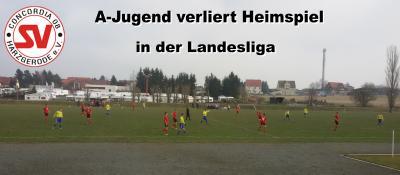 Foto zu Meldung: Landesliga: A-Jugend verliert 2:6 gegen Peißen