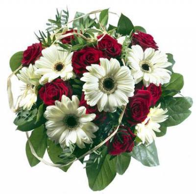 Foto zu Meldung: Alles Gute zum Frauentag !!!