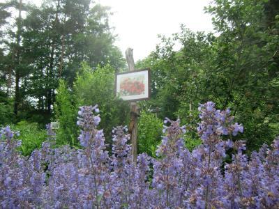 Foto zur Meldung: Aktion Offene Gärten