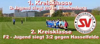 Foto zu Meldung: D - u. F2 Jugend gewinnen Nachholspiele