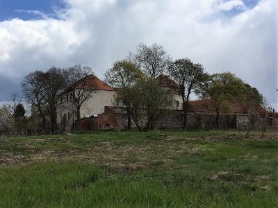 Foto zu Meldung: Blick auf die Burg ist wieder frei