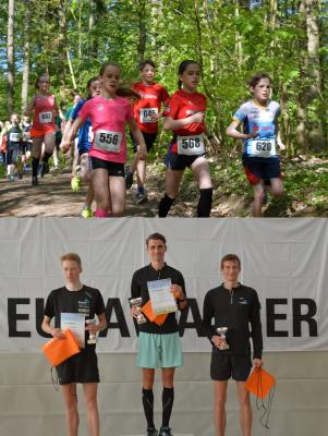 Foto zur Meldung: 14. EURAWASSER-Waldlauf - Spitzensport im Laager Stadtwald