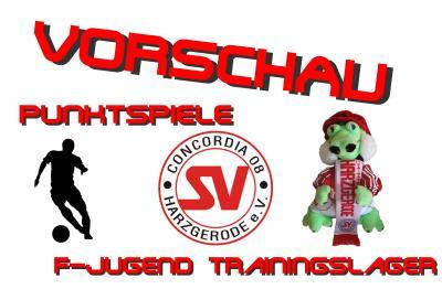 Foto zu Meldung: Vorschau / Punktspiele u. F-Jugendtrainingslager