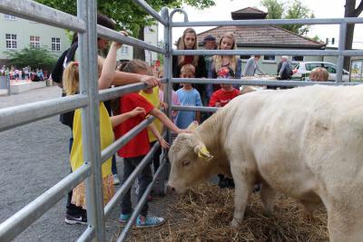 Foto zur Meldung: Schnuppertag für Schulanfänger bei der Vorschulmesse der Carl-Anwandter Grundschule Calau