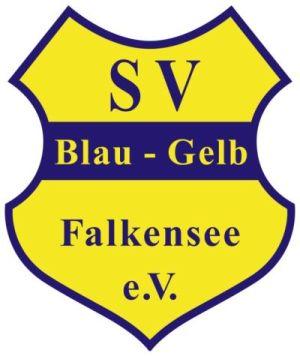 Foto zur Meldung: Fußballverein Blau-Gelb Falkensee e.V. sucht Trainer