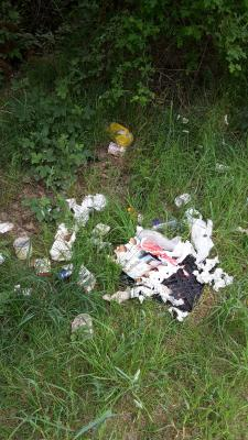 Foto zur Meldung: Mutwillige Zerstörung von Infotafeln und Sitzbänken in der Velpker Schweiz
