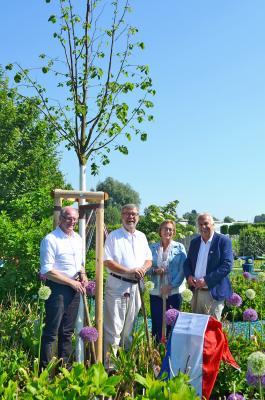 Foto zu Meldung: Partner aus Vught schenken Oranienburg eine Königslinde