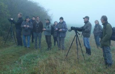 Foto zur Meldung: Ornithologische Exkursion bei Geisleden