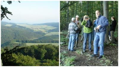 Foto zur Meldung: Exkursion zum Dietzenröder Stein