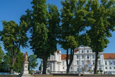 Foto zu Meldung: Alte Schlossplatzlinde muss gefällt werden