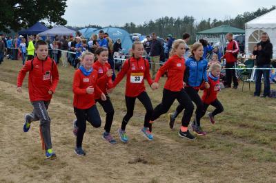 Foto zur Meldung: Ostseestaffelmarathon - beliebter denn je