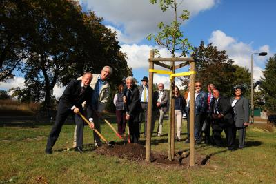 Bild der Meldung: Partnerschaftsbaum steht an der Wiesenstraße